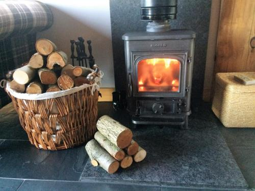 Log Burner and logs